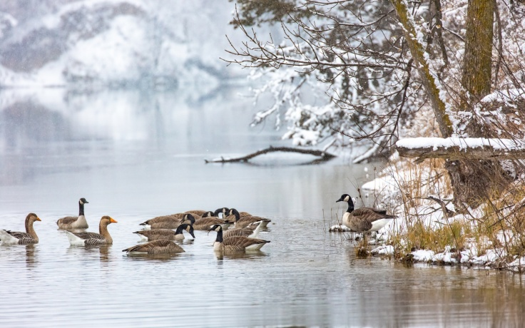 ozero-utki-zima